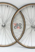 Campgnolo SR low flange on Martano rims